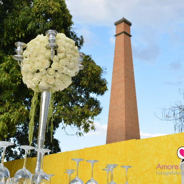 Destination wedding Tequila Jalisco